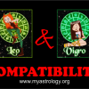 Friendship Compatibility for Leo and Virgo using Astrology