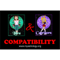 Friendship Compatibility for Libra and Capricorn using Astrology