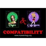 Friendship Compatibility for Virgo and Capricorn using Astrology