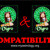 Friendship Compatibility for Virgo and Virgo using Astrology