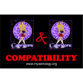 Friendship Compatibility for Capricorn and Capricorn using Astrology