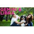 Gemini and Libra Compatibility