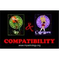 Friendship Compatibility for Leo and Capricorn using Astrology
