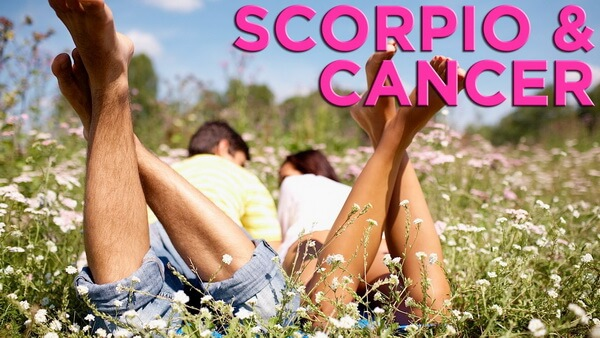 Scorpio and Cancer Compatibility