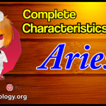 Profile Aries Man